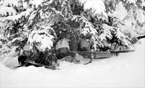 Finland's Winter War: hidden Finnish riflemen