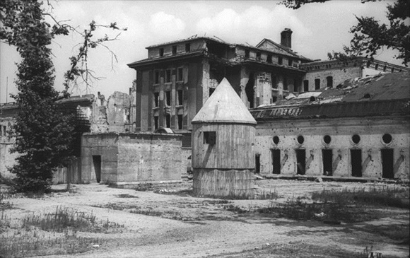 Reich Chancellery garden, Berlin 1946