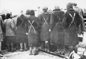 Ravensbrueck concentration camp prisoners identified for release to Red Cross