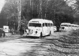 Danish Red Cross buses