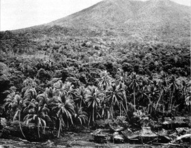 Battle of Cape Gloucester: New Britain jungle landscape
