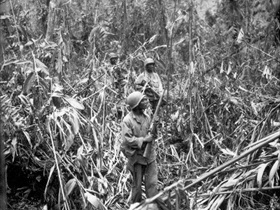 African American soldiers of 93rd Infantry Division on Numa-Numa Trail, Bougainville, May 1, 1944