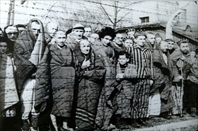 Auschwitz survivors at time of liberation, January 1945