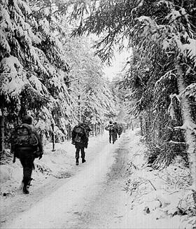 517th Parachute Regimental Combat Team in Huertgen Forest, early February 1945
