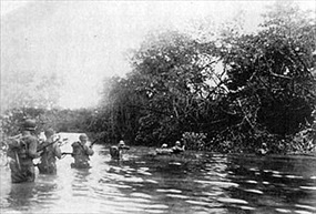 Western New Guinea Campaign: Battle of Driniumor River, July–August 1944