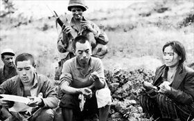 Battle of Okinawa: POWs on Okinawa